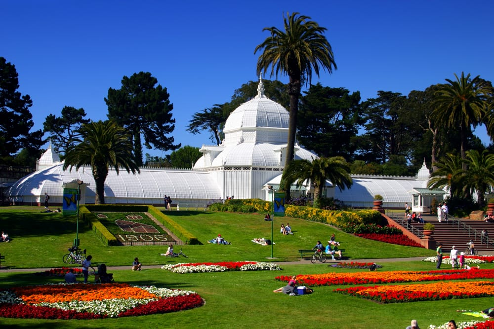 Body- Conservatory of Flowers, San Francisco