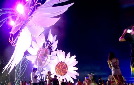 Everything You Need to Know About EDC 2015